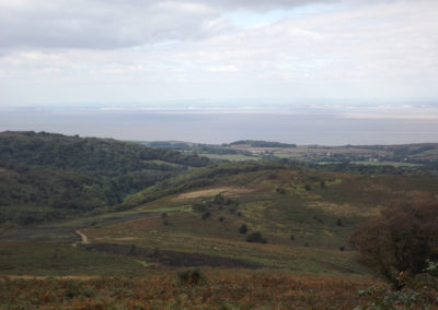 Dowsborough Hill Vista