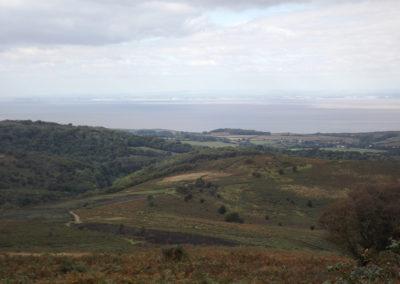 Dowsborough Hill Vista