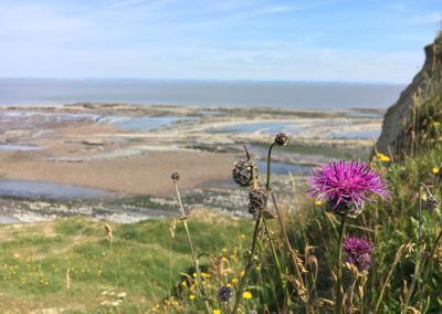 England Coast Path 3